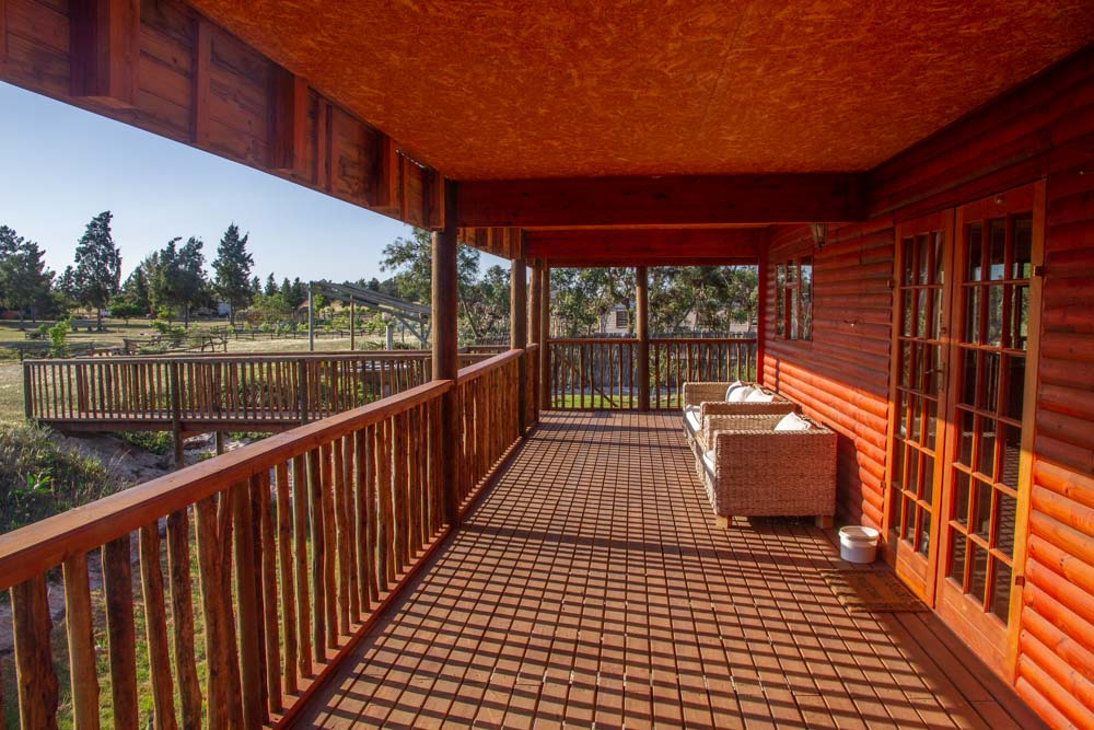 Barn-owl-deck-view-1